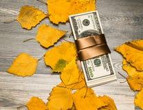 Finances et fond, automne dans les affaires photographie stock