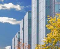 Financiële wolkenkrabbers Stock Fotografie