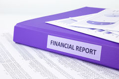 Financial accounting report with sale and purchase statement. Purple binder of financial report place on sale and purchase statement, concept to financial Stock Photography