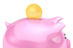 Financial aid planning for future college intuition fee costs. A coin dropping into a piggy bank for savings set aside for education costs Royalty Free Stock Photography