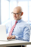 Financial analyst. Portrait of efficiency financial advisor analyzing data at computer while sitting at office royalty free stock image