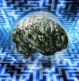 Financial Brain. And Maze background Royalty Free Stock Image