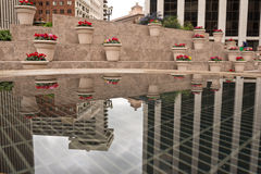 Financial District Potted Flowers and Reflection Stock Images