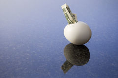 Financial egg 2. Dollar bill hatching from an egg on a marble desk Stock Image