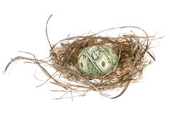 Financial egg nest Royalty Free Stock Image