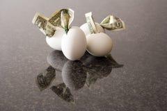 Financial eggs stock photo