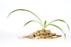 Financial fertilizer Royalty Free Stock Image