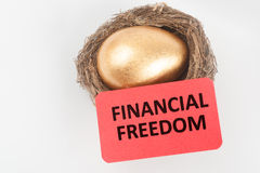 Financial freedom concept. With golden egg in the bird nest Royalty Free Stock Photo