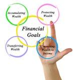 Financial Goals. Presenting Diagram of Financial Goals Stock Photography