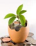Financial Growth Royalty Free Stock Image