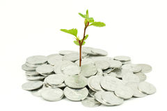 Financial growth concept Royalty Free Stock Photo
