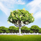 Financial growth concept money tree. Financial growth concept with money tree on green grass and bright sky background. 3D Rendering Stock Image