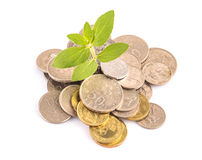 Financial Growth IX Royalty Free Stock Image