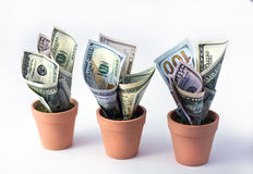 Financial growth. Stock Photo