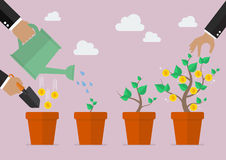 Financial growth process. Planting process business metaphor Stock Image