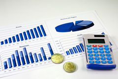 Financial Management Chart - 10. Financial management charts in a corporate blue color Royalty Free Stock Images