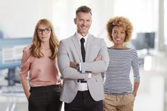 Financial management standing in the office Stock Photography