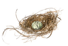 Financial nest egg Royalty Free Stock Photos