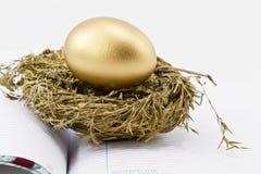 Financial Nest Egg on Open Ledger. On an open ledger, a gold nest egg sits in sparkling gold nest; selective focus on nest egg Royalty Free Stock Photography