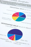 Financial pie chart Royalty Free Stock Image