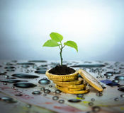 Financial planning and banking related series Stock Image