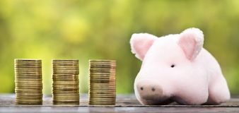 Free Financial Planning, Pension, Retirement Concept - Gold Money Coins With A Pig Stock Images - 153284254
