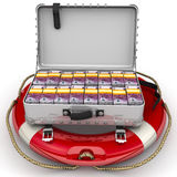 Financial security. Open suitcase filled with packs of European banknotes lying on the lifeline. The concept of financial security. Isolated. 3D Illustration Royalty Free Stock Photography