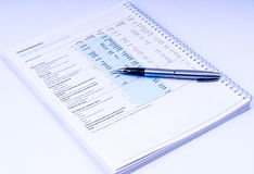 Financial statements with pen Royalty Free Stock Photo
