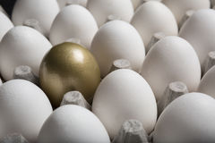 Financial Success finding the Golden Egg and standing out from the crowd Stock Photos