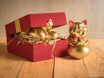 Financial success. Golden egg In a red gift box Stock Images