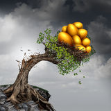 Financial Success Problem. And investment stress symbol as a growing tree breaking due to the excess weight of growth income as a group of golden nest eggs Stock Photo