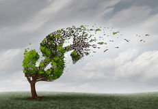 Financial Trouble. And money adversity or economic crisis concept as a tree being blown by the wind and damaged or destroyed by the force of a storm as a Royalty Free Stock Images