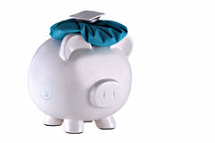 Financially blind headache. Poor little piggy bank is blinded by financial troubles and can't see his way clear Royalty Free Stock Photography