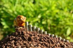 Financie moedas e mealheiro da pilha no fundo da natureza Imagem de Stock