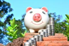 Financie moedas e mealheiro da pilha no fundo da natureza Imagens de Stock