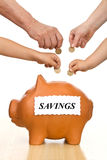 Financieel onderwijs en geldbesparingsconcept Stock Foto's