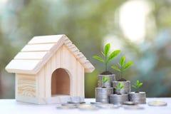 Finans växt som växer på bunt av mynt pengar och modellhus på naturligt grönt bakgrund, räntesats- och bankrörelsebegrepp arkivfoton