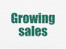 Finansbegrepp: Växande försäljningar på väggbakgrund Royaltyfri Foto