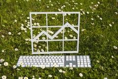 Finansdiagramdiagram i trädgård Arkivfoto