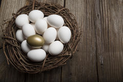Finansiell framgång som finner det guld- ägget och anseendet ut från folkmassacloseupen Arkivfoto