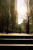 finansiell värld för center borggård Royaltyfri Fotografi
