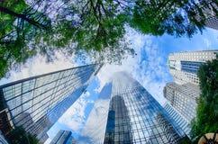 Finansiella skyskrapabyggnader i Charlotte North Carolina Royaltyfri Foto