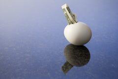Finansiellt ägg 2 fotografering för bildbyråer