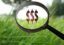 Finanza dei soldi fotografie stock libere da diritti