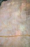 Finanzanzeige von Simon de Montfort in Carcassonne Lizenzfreie Stockbilder
