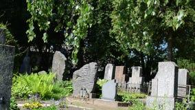 Finanzanzeigenbaumfriedhof stock footage