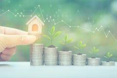 Finanzas, mano de la mujer que sostiene la casa modelo con la planta que crece en la pila de monedas dinero y gráfico en el fondo fotos de archivo libres de regalías