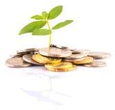 Finanzwachstum X Stockfotos