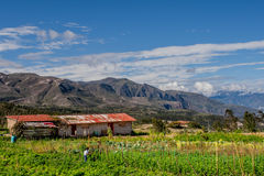 Finca (exploração agrícola) na estrada a Saraguro, Equador Fotos de Stock Royalty Free
