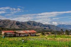Finca (lantgård) på vägen till Saraguro, Ecuador royaltyfria foton